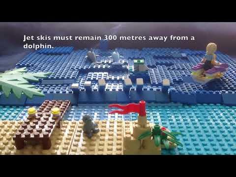 Safe distances from marine mammals