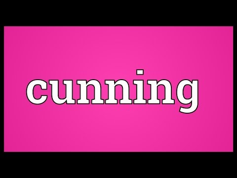 Cunning Meaning