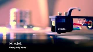 Baixar R.E.M. - Everybody Hurts [Vinyl HD]