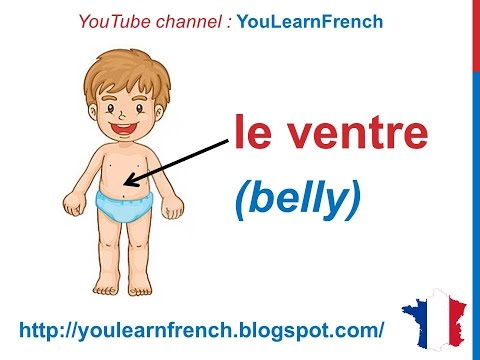 French Lesson 33 BODY PARTS French Vocabulary Parties du corps English subtitles Partes del cuerpo