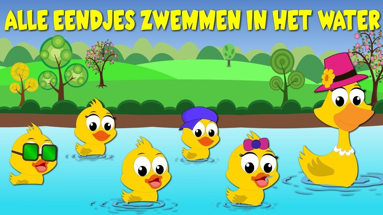 nederlandse kinderliedjes alle eendjes zwemmen in het