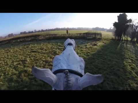Cheshire Drag Hunt - The Merlin 26/11/16