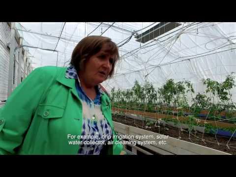 Greenhouse in Schools - Arnasay, Kazakhstan