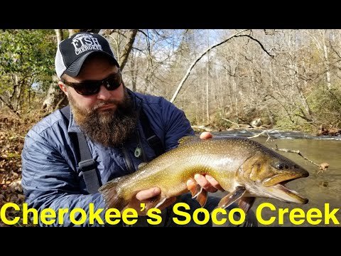Trout Fishing Cherokee's Soco Creek Trout