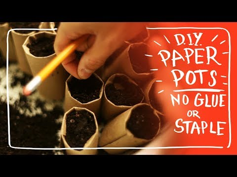Make Free Paper Pots for Seed Starting