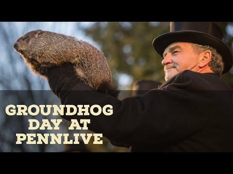 Groundhog Day 2018: Punxsutawney Phil facts and frequently