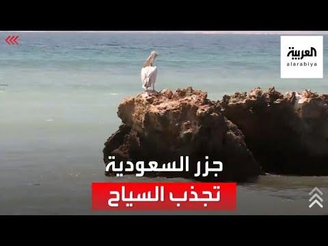سرعة إجراءات المرور تضاعف الإقبال السياحي على الجزر السعودية من السفن واليخوت الدولية