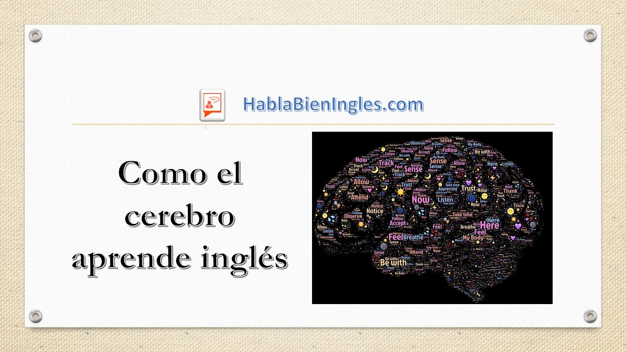Como El Cerebro Aprende Ingles