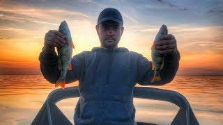 Рыбалка на Финском Заливе | День четвертый | Лучший результат