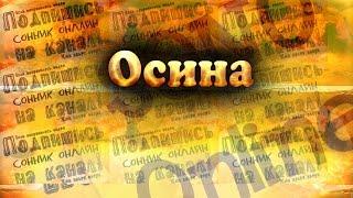 К чему снится Осина Сонник. Бесплатное толкование снов онлайн