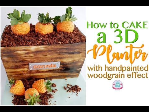 HOW TO CAKE a 3D Carrot Patch with handpainted woodgrain effect | Abbyliciousz The Cake Boutique