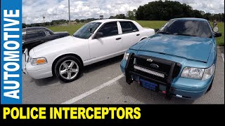 Panther Strike Auto Club Ford Crown Victoria fans police cars nudge bars by Jarek Ocala Florida USA