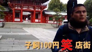 熊本から発信‼ 障がい者インフォテインメント‼ 今回は「熊本を歩こう‼」...