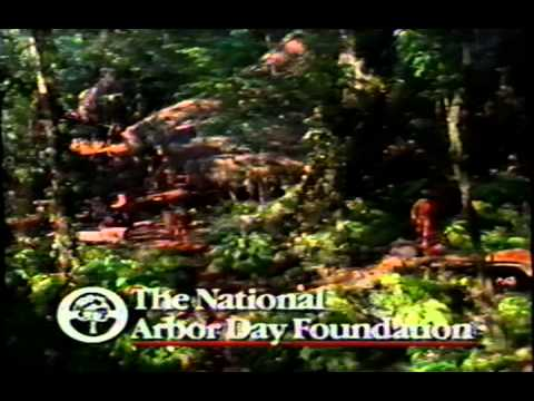The National Arbor Day Foundation Rain Forest Rescue 1998 Promo Vhs Capture Youtube