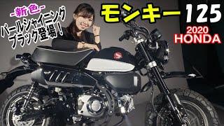 HONDA モンキー125に新色登場!冒険の相棒にぴったり!#MSTVがんばれモーターサイクルショー