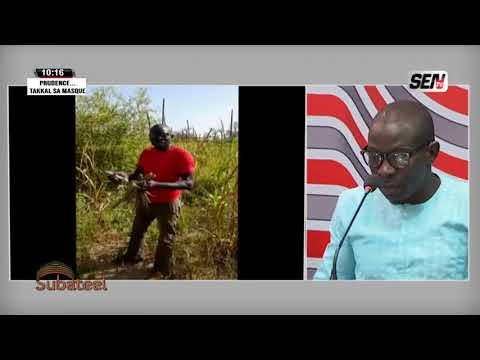 Le cri de cœur d' El Hadji Mansour Diop dans Subateel