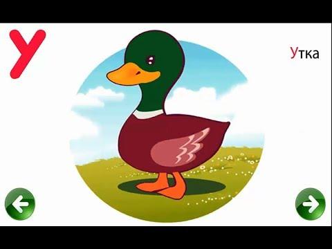 Азбука в Картинках - Развивающее Видео Для Детей Раннего Возраста ♦ #алфавит