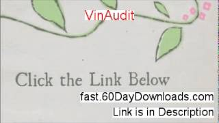 VinAudit Download the System Free of Risk - MY TRUE STORY
