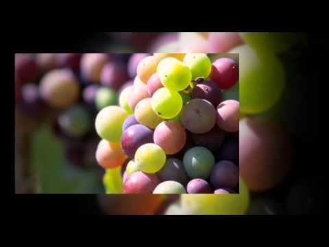 Oak Creek Vineyards & Winery Promo Video