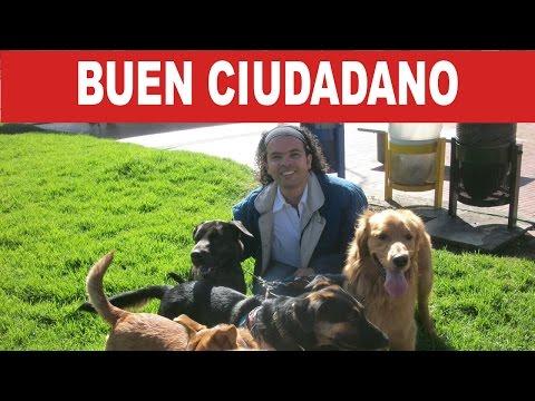 Buen Ciudadano - Convocatoria CityTV, Cívico y Bancolombia 2016 | Tu Mascota TV
