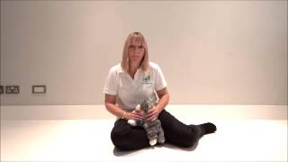 Choking Cat - What to Do | First Aid for Pets