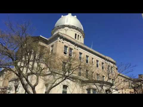 EF NEW YORK - University Preparation Day