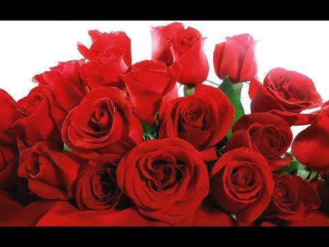 Kuchh To Tha Tere Mere Darmiyaan (Lyrics) | Shreya Ghosal | Hearttouching Sad Song