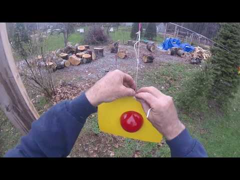 Hanging The Natural Bug Control Traps By The Fruit Trees - Simply Garden