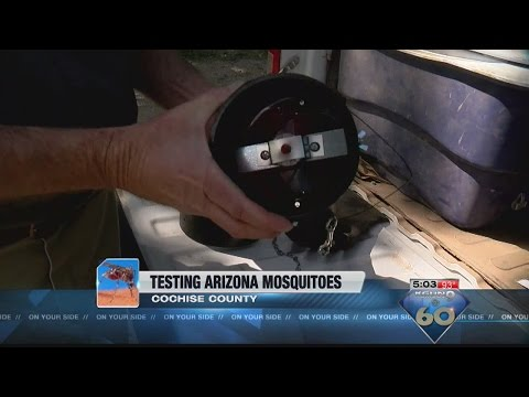 Cochise County setting up mosquito traps