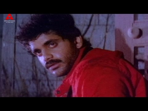 Siva Siva Video Song || Agni Putrudu Movie || Nagarjuna,ANR