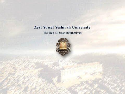ZYYU - Zeyt
