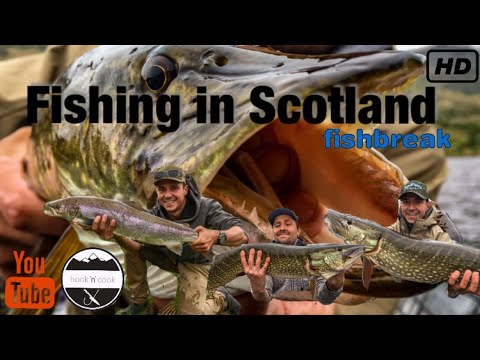Fishing In Scotland 2018  -  Trossachs Fishing Lodge -  Fishbreak