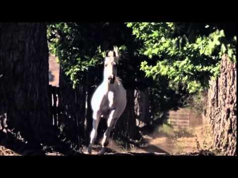 Natasha Bedingfield~~Wild Horses