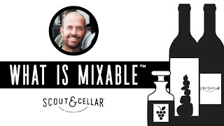 What is MIXABLE™ | The World's First MIXABLE by Scout & Cellar