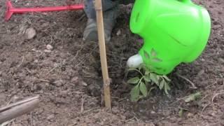 Γιορτή οικολογικής γεωργίας και χειροτεχνίας στο πάρκο Καρατάσου