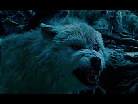 Beauty And The Beast  (2017) TV SPOT #3