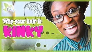 Why is your Hair Nappy? Explained Thumbnail