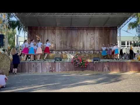 Festival Mravenec 2021 - Rusínsky