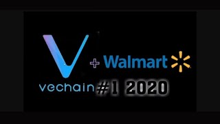 VET # 1 2020 VeChain Is One Of The Few Projects That Will Come Out as a Winner From Crypto Bubble