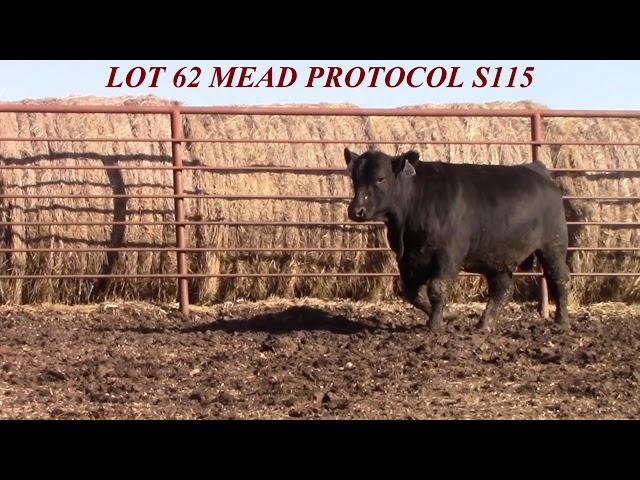 Mead Farms Lot 62