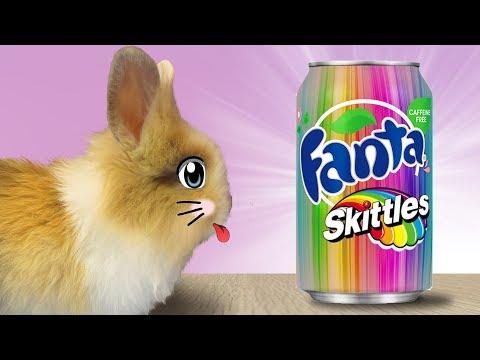 Кролик БАФФИ и ФАНТА СКИТЛС! СПИННЕР кролика БАФФИ ! Коктейли в домашних условиях
