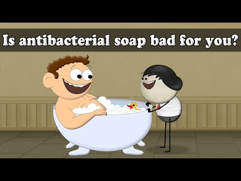 Is Antibacterial soap bad for you?   Smart Learning for All