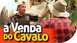 A VENDA DO CAVALO - PIADA DE CAIPIRA  - PARAFUSO SOLTO