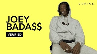 "Joey Bada$$ ""Land of the Free"" Official Lyrics & Meaning 