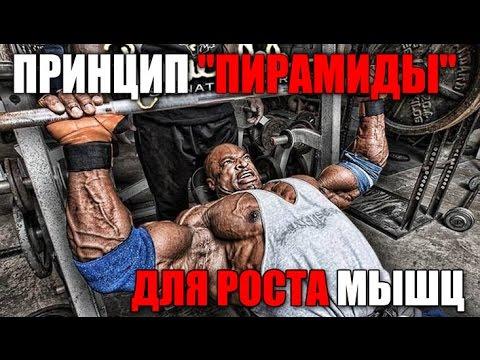 "ПРИНЦИП ""ПИРАМИДА"" для роста мышц"