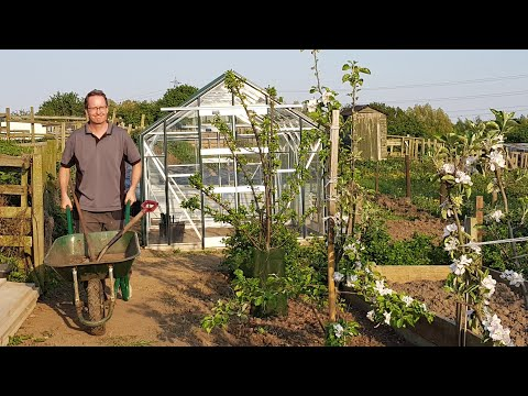 Allotment Days #56 New Greenhouse Build and Review of the Plot