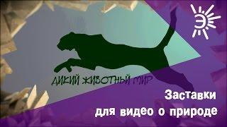 Заставка для видео о животных. Пример заставки перед видео о дикой природе.