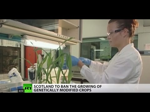Scotland says no to GMO