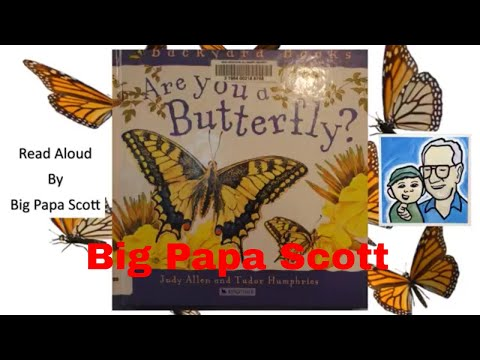 Are You a Butterfly? by Judy Allen and Tudor Humphries