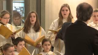 Der Jugendkathedralchor der St. Hedwigs-Kathedrale, Berlin